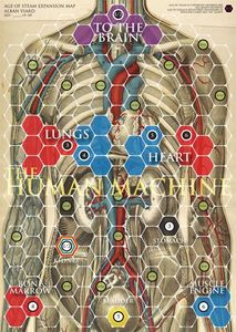 Age of Steam Expansion: Human Body/Synapses
