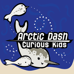 Arctic Dash: Curious Kids