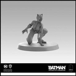 Batman: Gotham City Chronicles – Catwoman