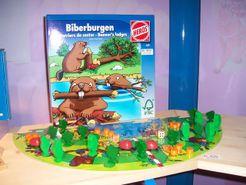 Biberburgen