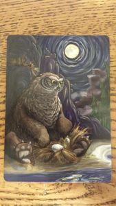Birds of a Feather: Undomesticated Owl Bear Promo