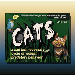 CATS: a sad but necessary cycle of violent predatory behavior