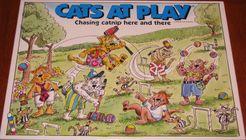 Cats At Play
