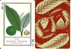 Chestnut Burrs