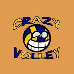 Crazy Volley