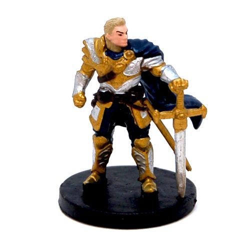 Dungeons & Dragons: Attack Wing – Human Paladin Expansion Pack