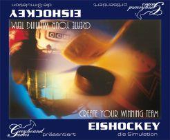 Eishockey: Die Simulation
