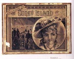 Excursion to Coney Island
