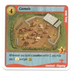 Fields of Green: Camels