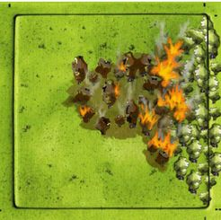 Forests: The Forest Fire (fan expansion to Carcassonne)