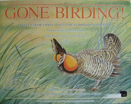Gone Birding!