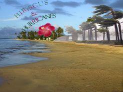 Hibiscus and Hurricane