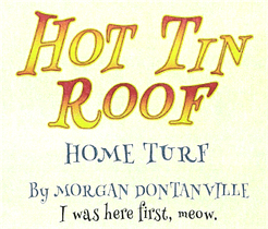 Hot Tin Roof: Home Turf