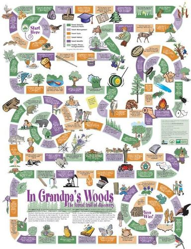 In Grandpa's Woods: The Forest Trail of Discovery