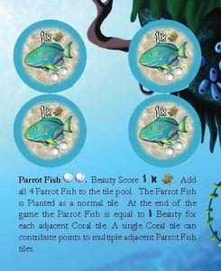 Octopus' Garden: Parrot Fish