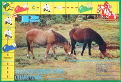 Ponies: The New Forest Pony Chase Game
