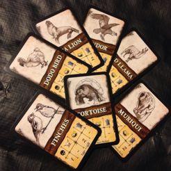 Robinson Crusoe: Adventures on the Cursed Island – Additional Beast Cards