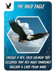 Salmon Run: The Bald Eagle