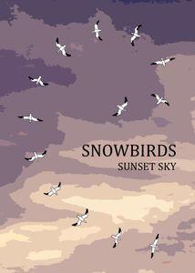 Snowbirds: Sunset Sky