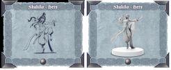 Sword & Sorcery: Hero Pack – Shakiko White/Black Monk