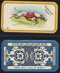 The Greyhound Racing Game