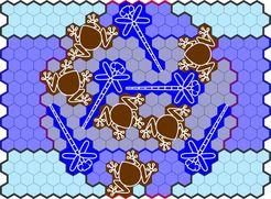 Toads & Dragonflies