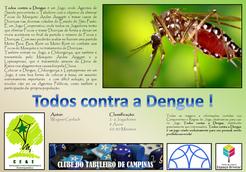 Todos contra a Dengue!