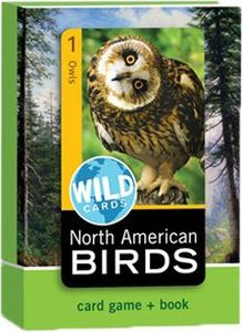 Wild Cards: North American Birds