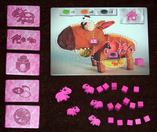 Wombat Rescue: 5th Player Expansion