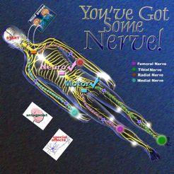 You've got Some Nerve!