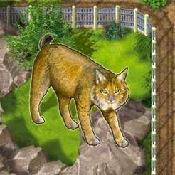 Zooloretto: Iberian Lynx